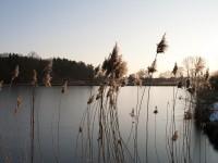Rund um Eggolsheim – Teil 2: Chris & 350D