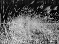 Rund um Eggolsheim – Teil 1: 5D Mark II
