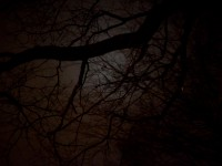 Available Light bei Nacht: Ein paar Erfahrungen